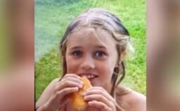 Policie hledá osmiletou dívku. Měla se ztratit na Domažlicku během rodinného výletu