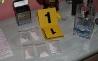 Policie v Česku loni zabavila drogy za 250 milionů korun. Kokainu se u nás daří čím dál lépe