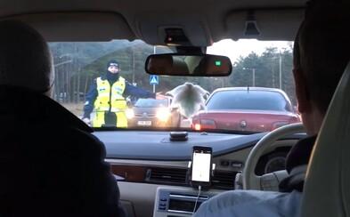 Policisté v Estonsku si nevšimli volantu na pravé straně a dali tak dýchnout spolujezdci místo řidiče