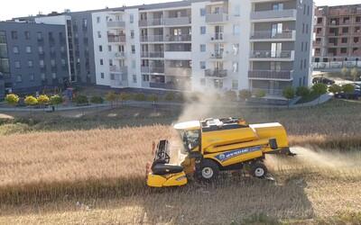 Poľský farmár odmietol predať svoje pole developerom. Teraz jazdí na kombajne pomedzi moderné bytovky