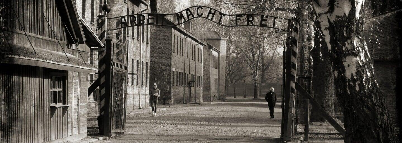 Pomstou za holokaust malo byť otrávenie 6 miliónov Nemcov. Činy takzvaných Jewish Avengers vyvolávajú zimomriavky