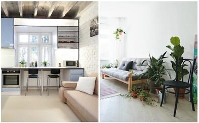 Ponuka pekných nehnuteľností na Airbnb je čoraz bohatšia aj na Slovensku. Tieto štyri z hlavného mesta sú toho jasným dôkazom