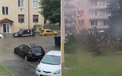 Popadané stromy a vytopené pivnice. Nedeľné búrky narobili paseku vo viacerých častiach Slovenska