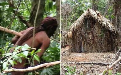 Poslední žijící člen amazonského kmene byl zachycen polonahý v pralese. Osamělý domorodec nemá zájem o kontakt s okolním světem