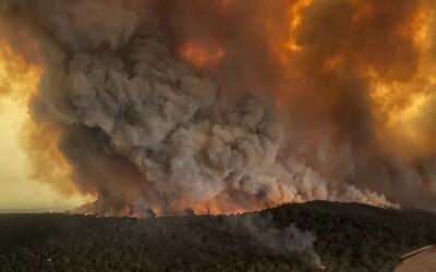 Požáry v Austrálii jsou tak velké, že vytvářejí vlastní počasí. V mnoha částech je vyhlášen stav nouze