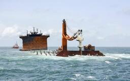 Požár na srílanské lodi způsobil únik chemikálií, podle médií již zemřelo 50 želv a 8 delfínů