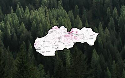 Pozrite si mapu a zistite, koľko lesov zmizlo z vášho okolia. Na Slovensku viac dreva ubúda ako pribúda