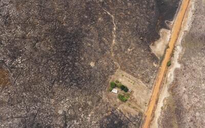 """Pre odlesňovanie hrozí, že sa v roku 2021 Amazonský prales dostane do """"bodu zvratu"""" a prestane produkovať dostatok dažďa"""