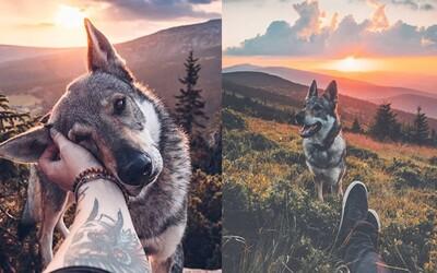Prechádzky talentovaného Čecha s krásnym vlčiakom pobláznili internet. Obaja si najviac užívajú západy slnka