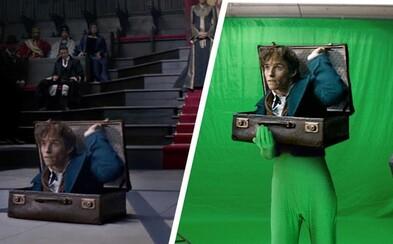 Před a po CGI: Úžasné video ti ukáže, jak vznikaly počítačové a praktické efekty pro Fantastická zvířata