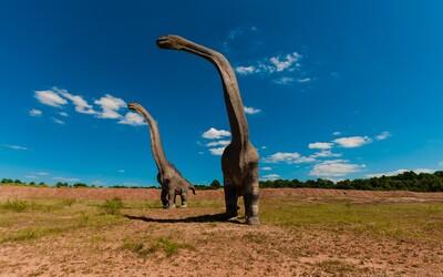 Před dvěma miliardami let přišla katastrofa. Na Zemi téměř zanikl veškerý život