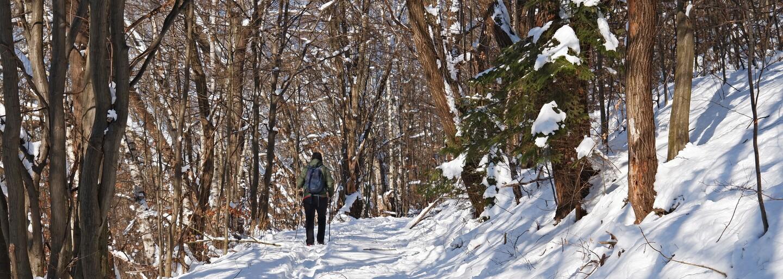 Předpověď počasí: V Česku napadl první sníh. Vydržet by měl do konce pracovního týdne