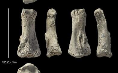 Překvapivý nález 85 000 let staré kosti lidského prstu může změnit náš pohled na migraci předků člověka z Afriky