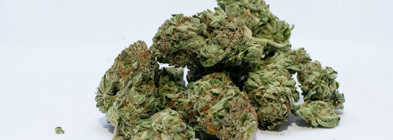 Prepašoval neuveriteľných 27 ton marihuany za tri noci. Príbeh legendárnej operácie pri americkom Bostone ľudia dodnes obdivujú