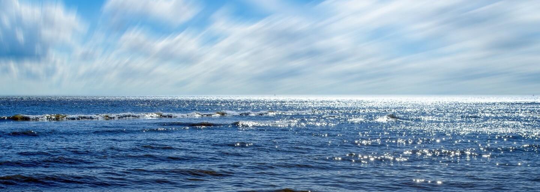 Prestaňme vyciciavať život z našich oceánov. Premyslená kampaň poukazuje na to, ako plasty ničia živočíšnu ríšu