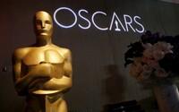 Prestižní filmové ceny Oscar by se měly jmenovat Anna kvůli genderové rovnosti, tvrdí americká herečka a italská režisérka