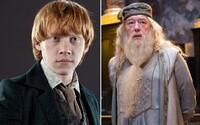 Příběh Harryho Pottera může skrývat nečekaný zvrat. Skalní fanoušci přišli s teorií, dle níž jsou Ron a Brumbál tím samým člověkem