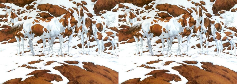 Prichádza ďalšie zavarenie mozgov: Zvládneš zistiť, koľko je na obrázku koní?
