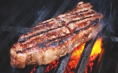Průzkum o veganství: Účastníků se ptali, zda by se raději vzdali masa, nebo žili o 5-10 let méně