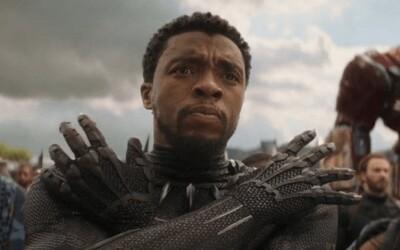 Proč byl Black Panther první, kdo se přes portál vrátil na pomoc Avengerům v souboji s Thanosem?