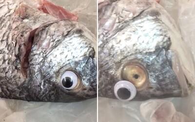 Prodavači lepili na ryby umělé oči, aby vypadaly čerstvě. Nekalá finta se jim však vymstila