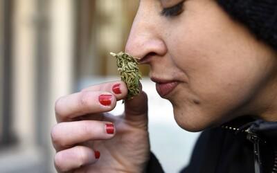 Prvá marihuanová kaviareň v USA je otvorená. Účinky THC vylepšia špeciálne jedlá