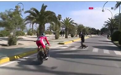 Psíčkarka vyhnala Sagana na chodník počas pretekov. Slovenský cyklista manéver zvládol s prehľadom