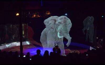 Rakouský cirkus používá místo zvířat hologramy. Jeho majitelka nesnáší týrání