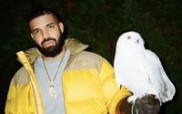 Raper Drake je první umělec v historii, který na Spotify překonal hranici 50 miliard streamů