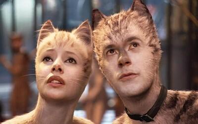 Recenze: Raději než Cats mi pusťte komedie Adama Sandlera v maďarském dabingu nebo Transformery na mobilu