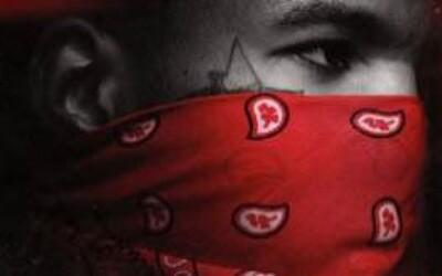Recenzia: Game - The R.E.D. Album