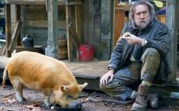 Recenzia: Pig