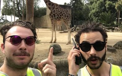Reflexné vesty ich dostali do zoologickej záhrady, na koncert Coldplay aj do kina úplne zadarmo. Ľudia uniformám priveľmi dôverujú