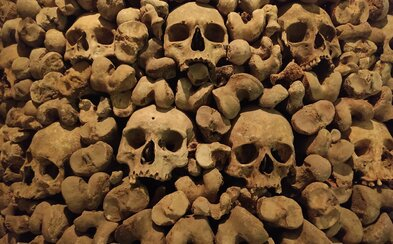 Report From an Underground Realm of the Dead. Thousands of Human Bones in an Ossuary Discovered by Accident.
