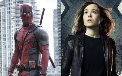 Režisér Deadpoola pripravuje X-Men sólovku s mladou mutantkou Kitty Pryde. Snímky sa však možno nikdy nedočkáme