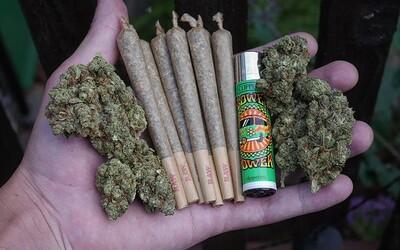 Richard Sulík povedal, že SaS je za dekriminalizáciu marihuany. Väzenie pre pár jointov vraj mladým ľuďom zbytočne zničí život