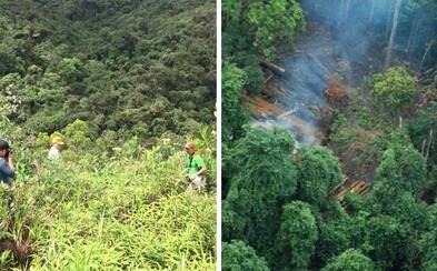 Riskujú životy, aby si ochránili svoje životné prostredie. Ľudia z exotických krajín bojujú proti developerom, dílerom i ťažbe dreva