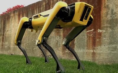 Robotického psa si už firmy mohou objednat. Netflix z něj udělal krvelačnou bestii