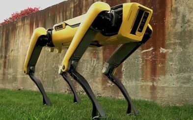Robotického psa si už firmy môžu objednať. Netflix z neho spravil krvilačnú beštiu