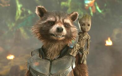 Rocket Raccoon bude důležitou částí příběhu Guardians of the Galaxy 3. Dozvíme se více o jeho minulosti a jizvách