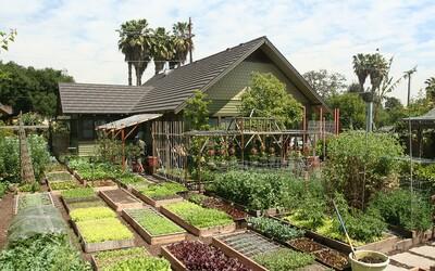 Rodina na jedlo denne minie 1,6 eura na osobu a za rok vypestuje 3 tony plodín. Miniatúrny pozemok premenila na efektívnu farmu