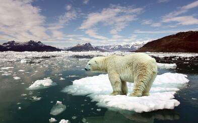 Rok 2016 bol od začiatku meraní najteplejší. Za 20 rokov sa priemerná teplota Zeme zvýšila až o stupeň