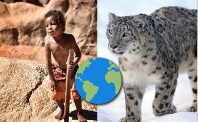 Rok 2017 bol plný aj dobrých správ. Z Afriky mizne HIV, detskej práce je čoraz menej a snežný leopard už nie je ohrozený