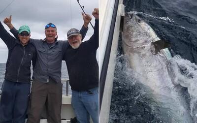 Rybář chytil 270kilového tuňáka v hodnotě 77 milionů korun, vrátil ho zpět do moře