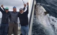 Rybár chytil 270-kilového tuniaka v hodnote 3 miliónov eur, vrátil ho naspäť do mora