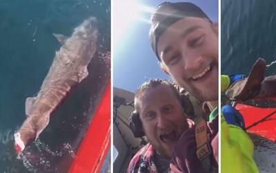 Rybári odrezali chvost žraloka a smiali sa, že má problémy plávať. Jason Momoa chcel mužom fyzicky ublížiť