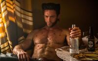 Samuel L. Jackson, Hugh Jackman či Ryan Reynolds. Aké filmy chystajú najlepší a najobľúbenejší herci Hollywoodu?