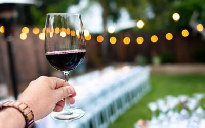 Sedem vín, ktoré by si mal poznať, ak si priaznivec zážitkov