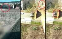 Sedmnáctiletá dívka se zřítila z brněnských hradeb. Pád zachytila kamera