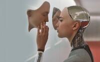 Sex s robotem? Průzkum zjišťoval, kolik lidí by jej zkusilo, výsledky jsou překvapivé